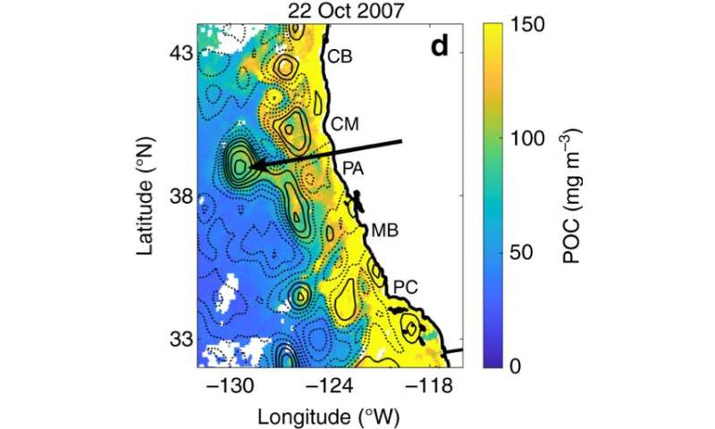 Scientists make discovery on coastal water flow