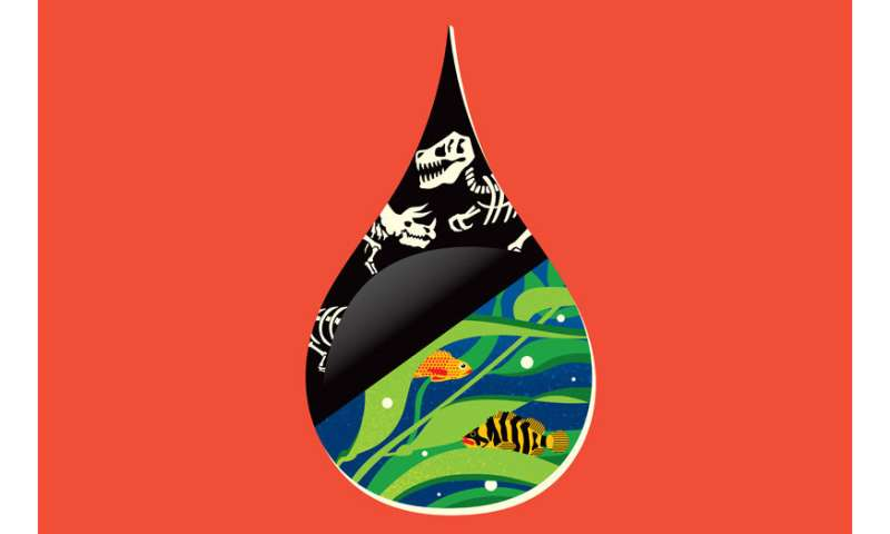 Environmental ingenuity: These creative business ideas aim