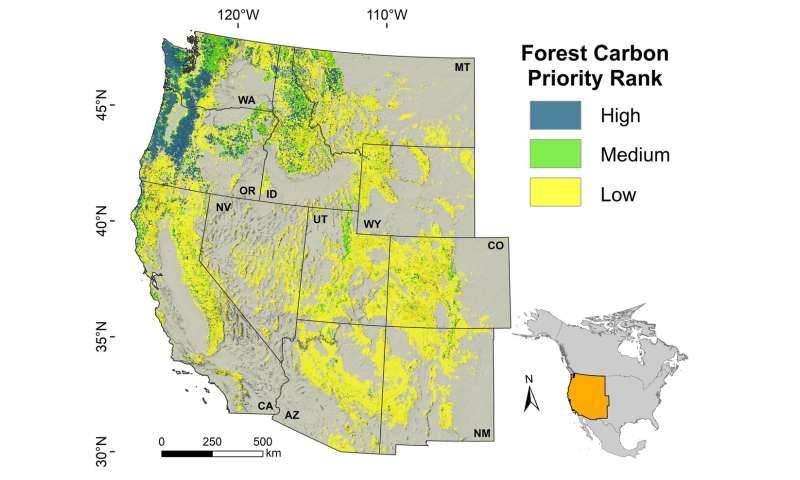 Researchers find some forests crucial for climate change mitigation, biodiversity