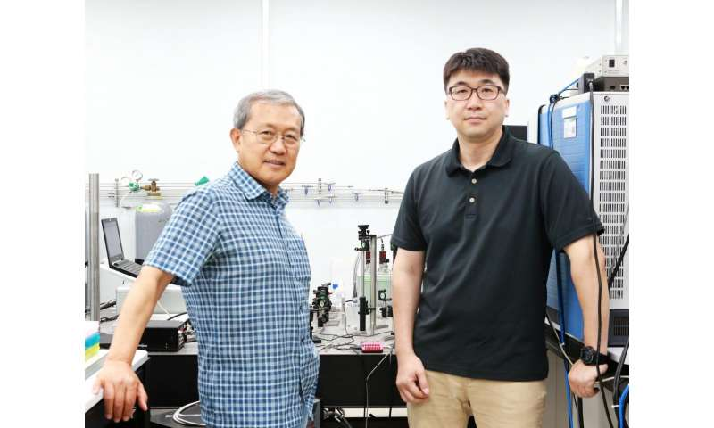 Development of simplified new mass spectrometric technique using laser and graphene