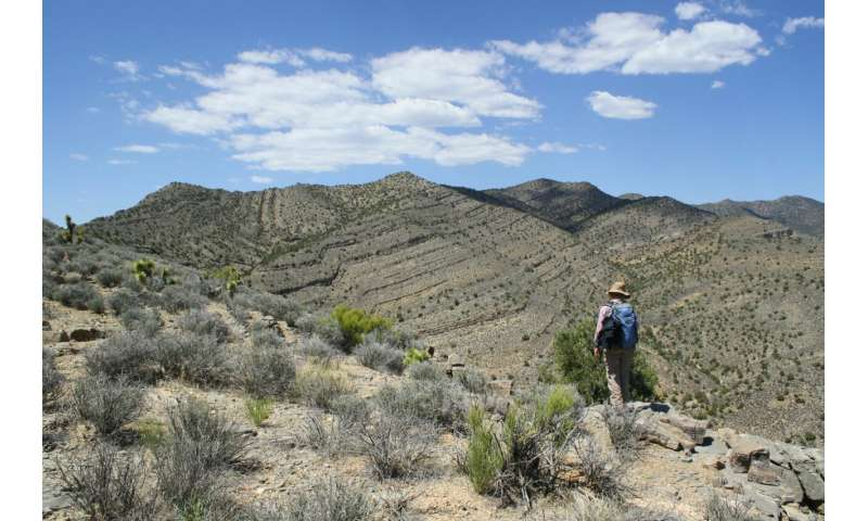 Researchers uncover new clues to surviving extinction
