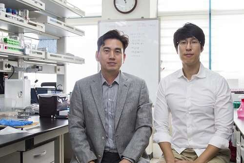 Researchers Describe a Mechanism Inducing Self-Killing of Cancer Cells