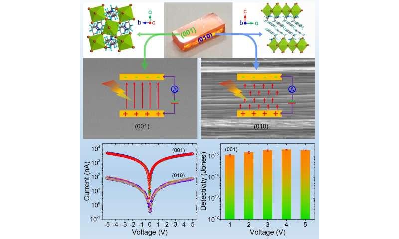 New technique prepares 2D perovskite single crystals for highest photodetectivity