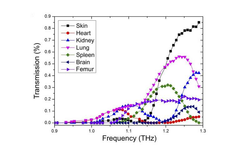 Scientists develop a tunable bio-imaging device using terahertz plasmonics