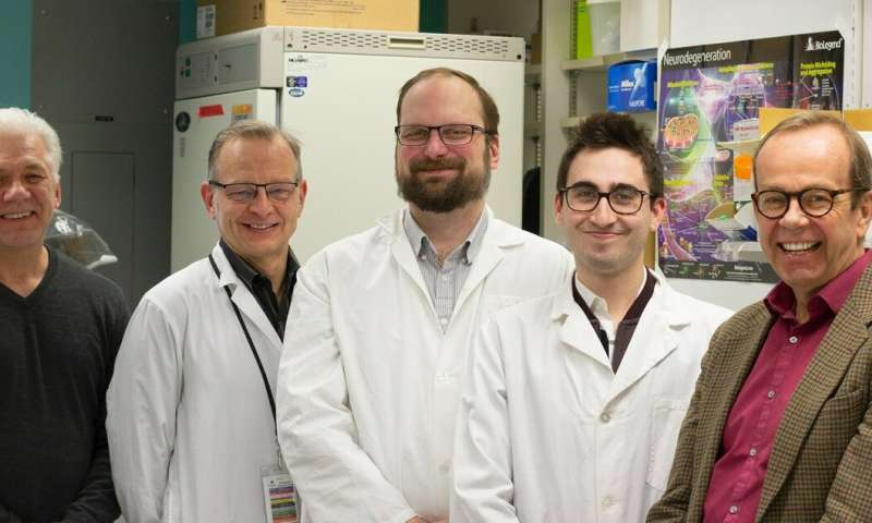 Scientists discover a hidden cause of encephalitis