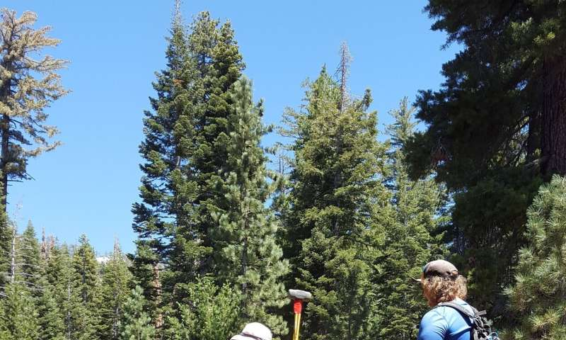 Study explores how rock expands near soil surface in Southern Sierra Nevada