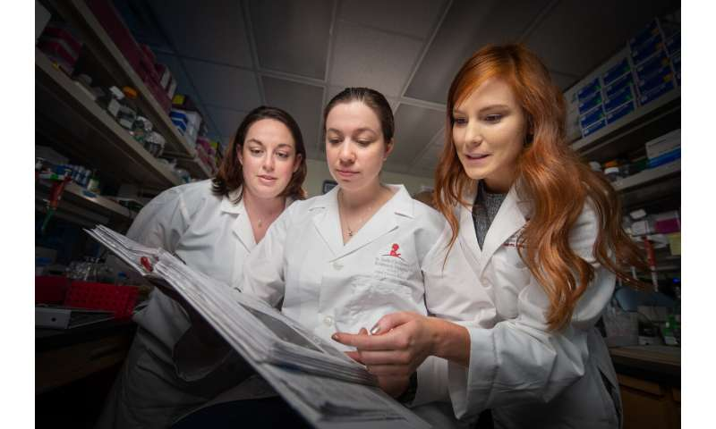 Researchers move beyond sequencing and create a 3D genome