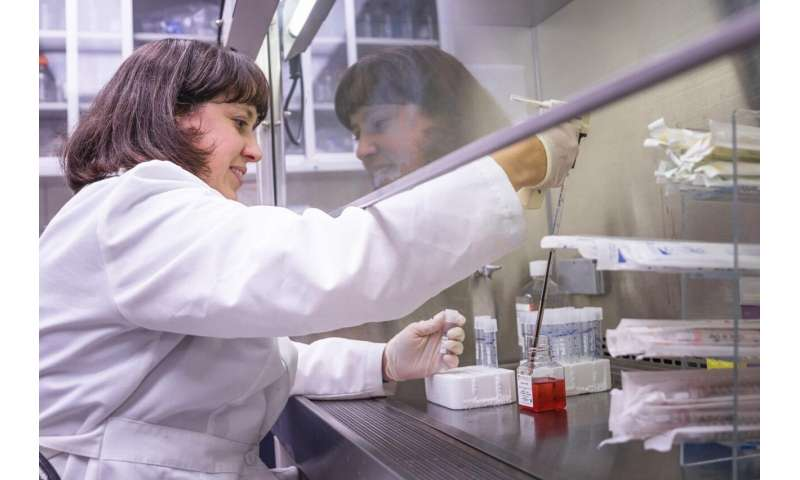 WVU researcher studies differences in the immune systems of men and women