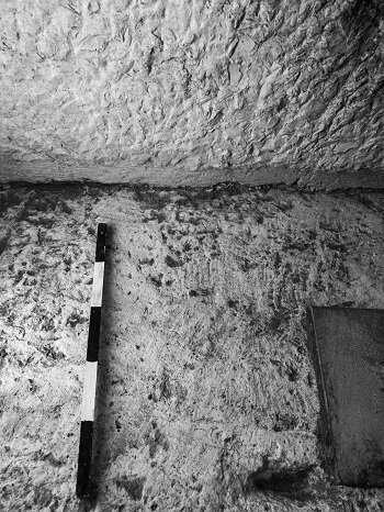 [Image: 19-archaeologis.jpg]