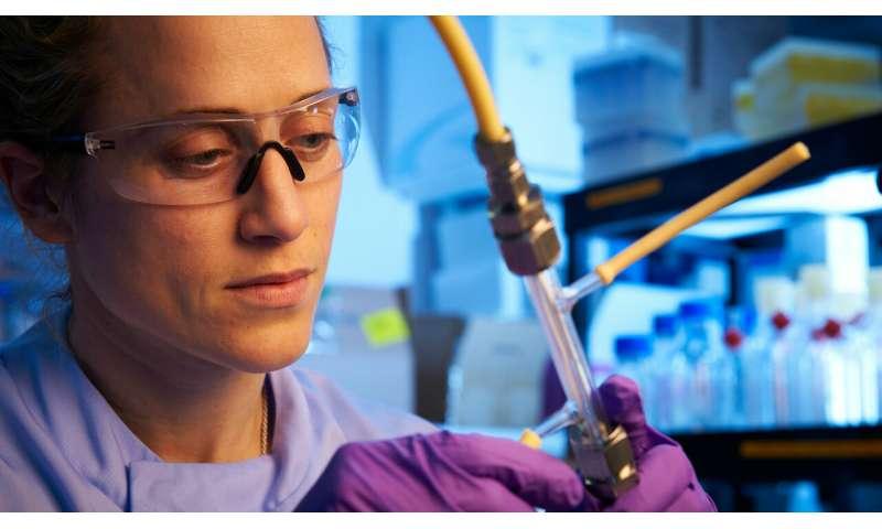 Investigadores que utilizan la ingeniería de tejidos para crear carne cultivada en laboratorio