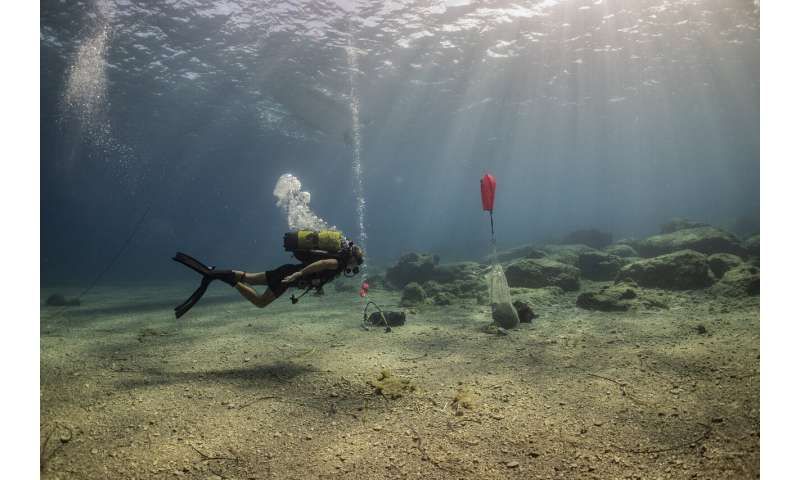 3 ancient shipwrecks discovered off Aegean island of Kasos