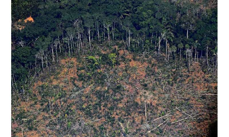 A deforested piece of land in the Amazon rainforest near an area affected by fires, about 65 km from Porto Velho, in the state o