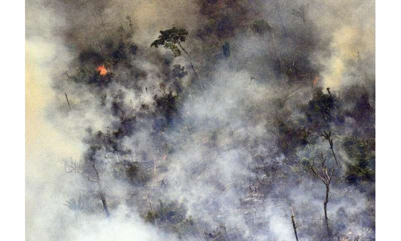 Aerial picture showing smoke from a two-kilometre-long stretch of fire billowing from the Amazon rainforest about 65 km from Por