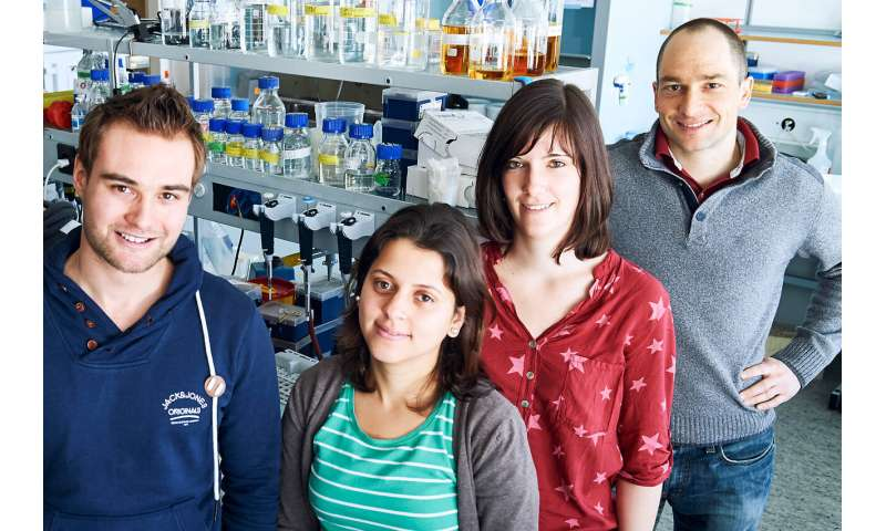 A new pathway to 'reprogram' killer cells