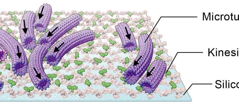 A simple way to control swarming molecular machines
