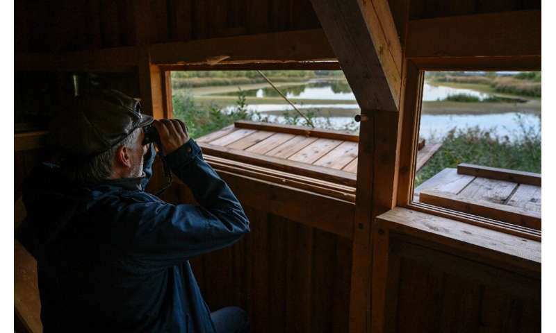 Birdwatchers in West Germany counted among the earliest to appreciate the natural value of the border