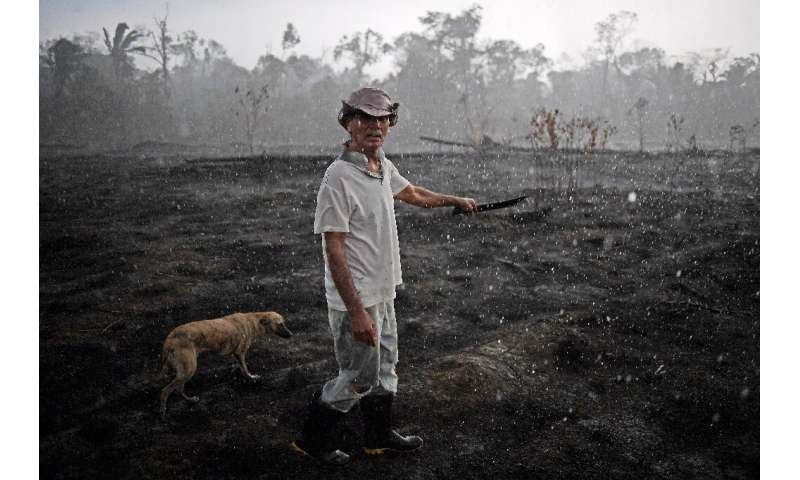 Brazilian farmer Helio Lombardo Do Santos and a dog walk through a burnt area of the Amazon rainforest, near Porto Velho, Rondon