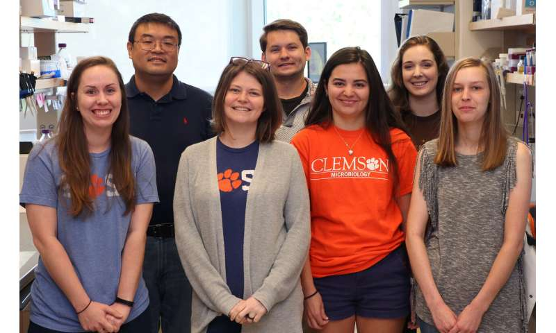 Clemson researchers gain ground in the race to cure widespread parasitic infection