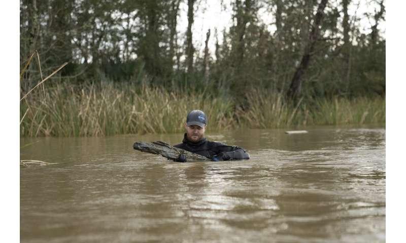 Clotilda: Last US slave ship discovered among gators, snakes