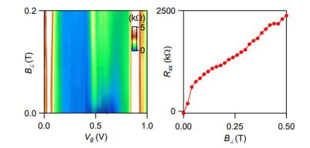 Correlated insulating and superconducting states in twisted bilayer graphene below the magic angle.