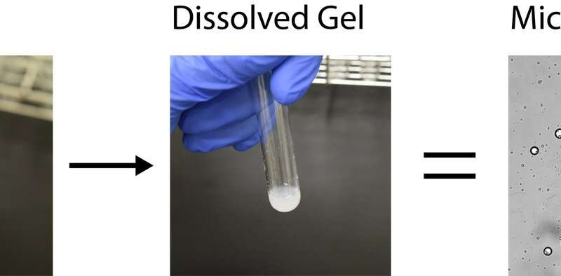 ELSI scientists discover new chemistry that may help explain the origins of cellular life