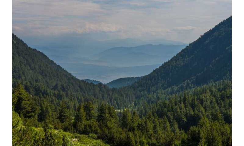 Expansion of the tourism zones in Pirin National Park a threat to the chamois population, says WWF-bulgaria