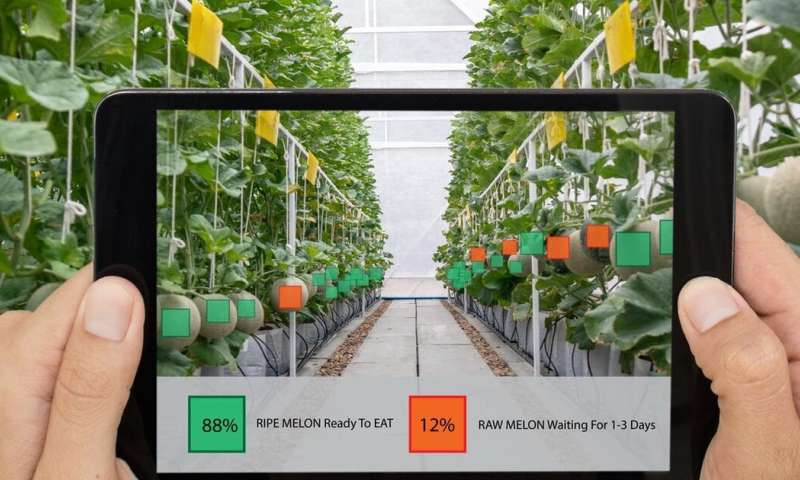 Forget smart cities (for a minute), we need to talk about smartfarms