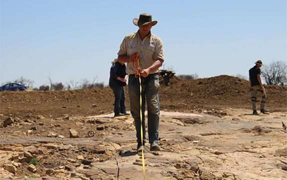 Giant dinosaur trackway discovered in Queensland
