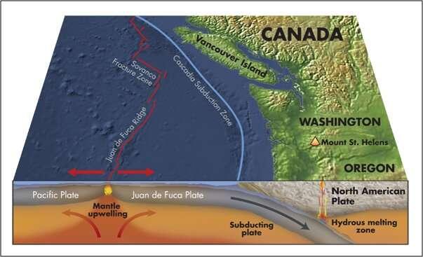 Hundreds of bubble streams link biology, seismology off Washington's coast