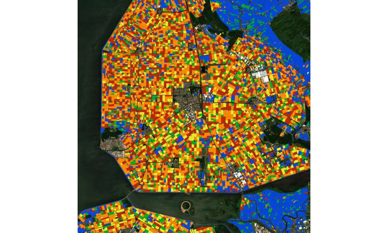 Land-cover dynamics unveiled