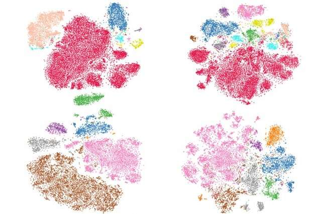 New approach could accelerate efforts to catalogue vast numbers of cells