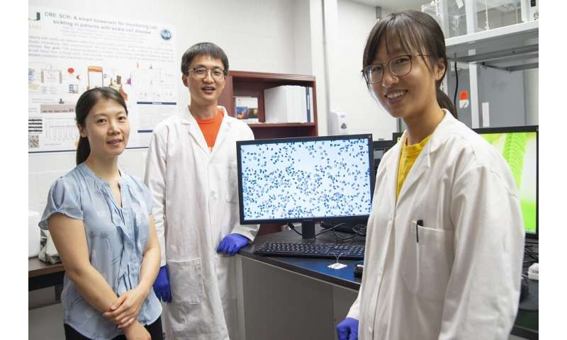 New method reveals how damage occurs in human biological cells due to mechanical fatigue