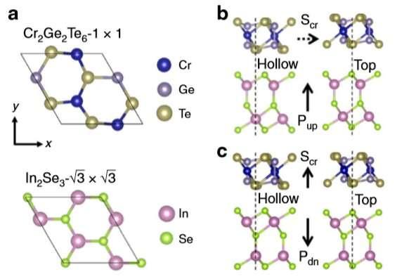 New study presents multiferroicity in atomic Van der Waals heterostructures