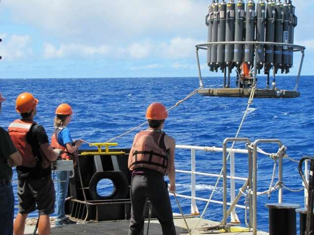 New study tracks sulfur-based metabolism in the open ocean