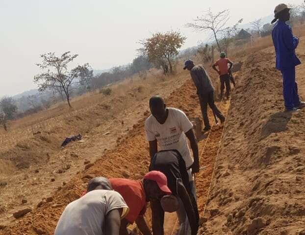No queda tierra: cómo una tecnología rentable puede enriquecer los campos pobres