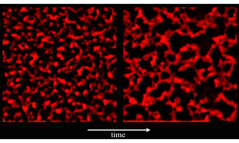 Of strawberry jelly and earthquakes: Space station investigation studies colloids