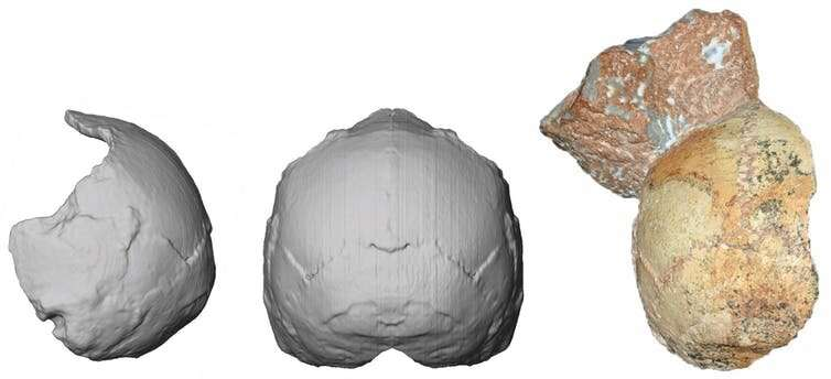 Oldest human skull outside Africa identified as 210,000 years old