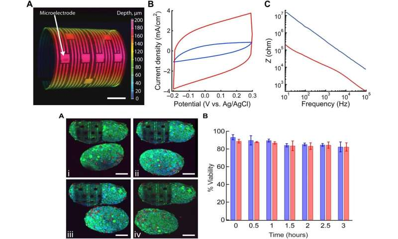 Organ-on-e-chip: 3-D self-rolled biosensor array (3-D-SR-BA) to electrically interrogate electrogenic cells