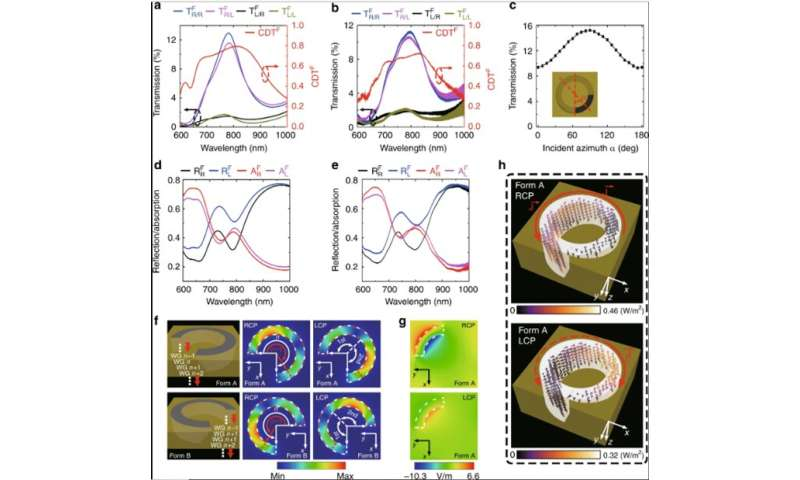 Polarization-encryption based data storage in 3-D Janus plasmonic helical nanoapertures