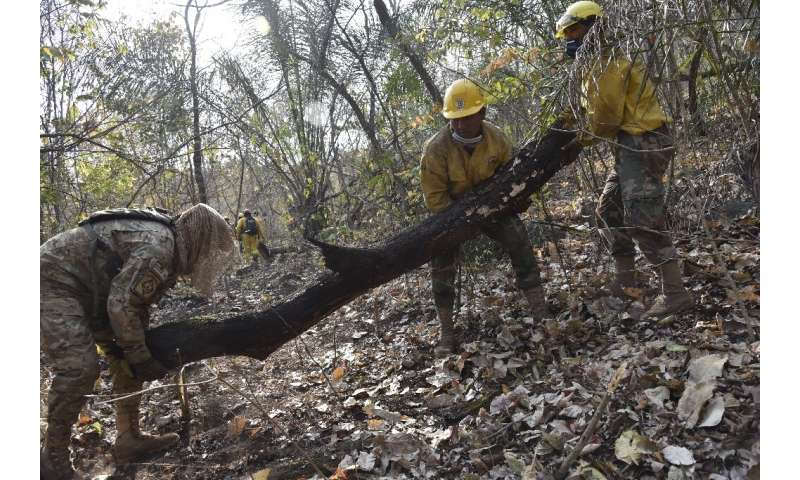 Reforestation needs to follow the extinguishing of the fires, said Guterres