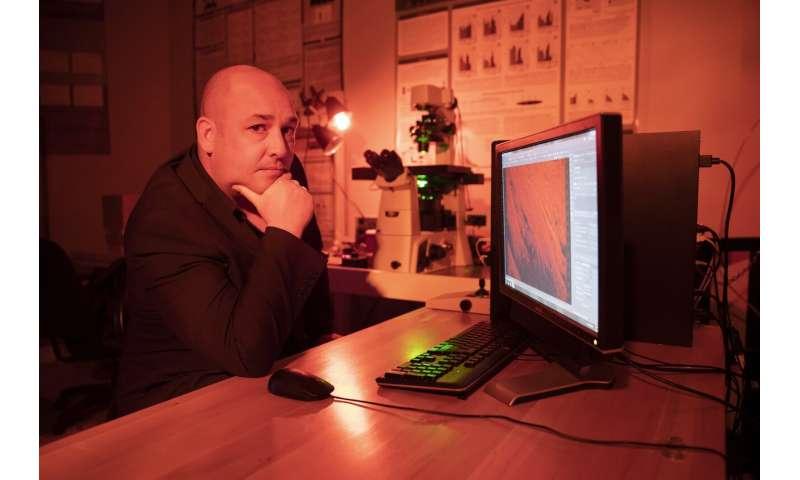 Research could help flexible technology last longer, avoid critical failures