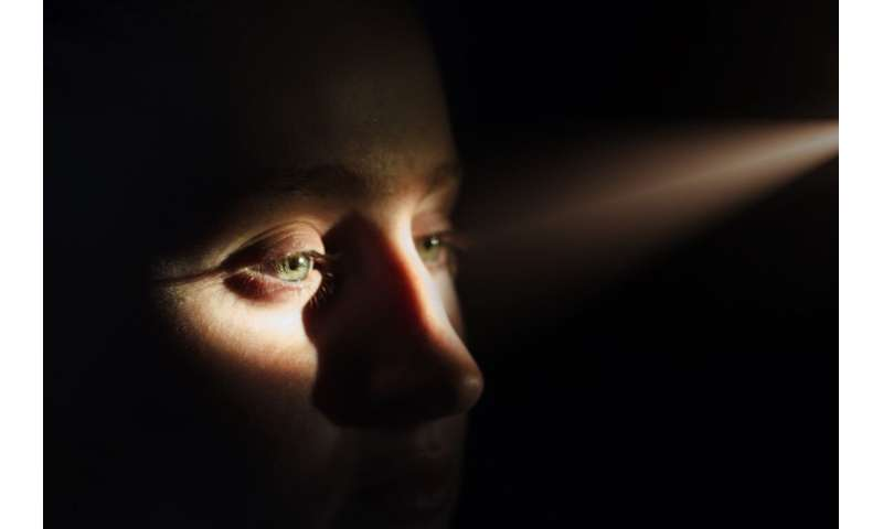Research explains how eyes see continuously in bright light