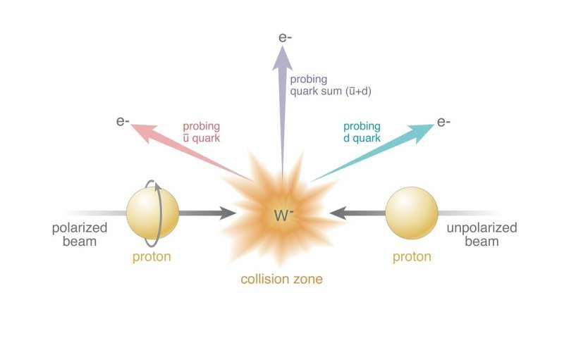 Sea quark surprise reveals deeper complexity in proton spin puzzle