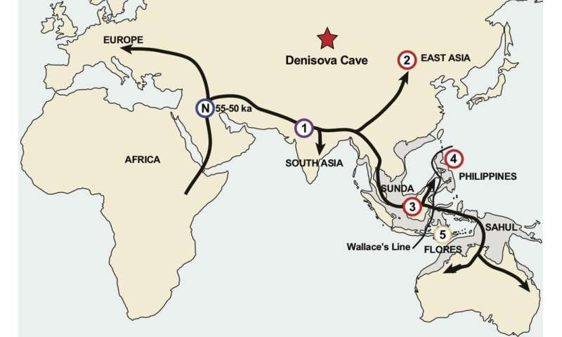 Southeast Asia was crowded with archaic human groups long before we turned up