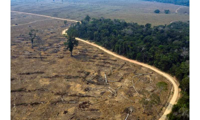 Thousands of troops and firefighters have been deployed to combat the fires devouring chunks of the Amazon