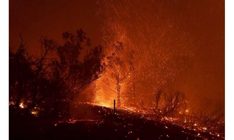 Wind blows embers as the Cave fire burns a hillside in Santa Barbara, California on November 26, 2019