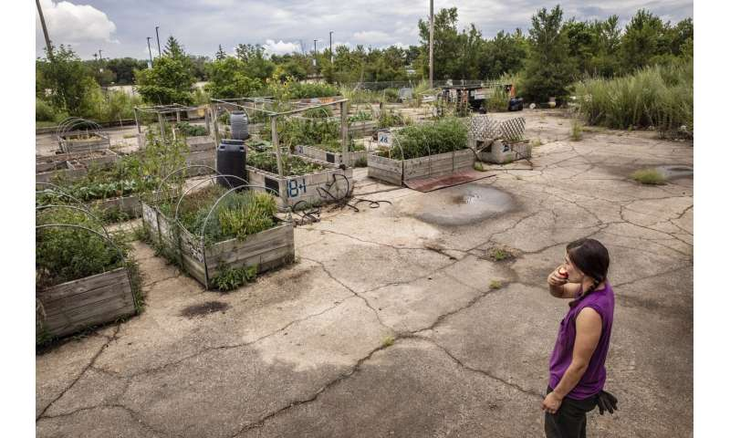 City gardens, public produce stands ease 'food desert' woes