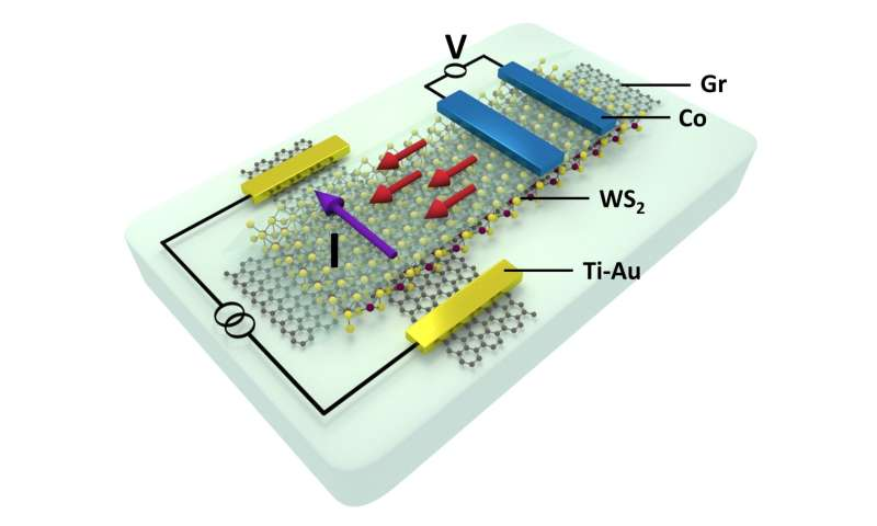 Scientists create fully electronic 2-dimensional spin transistors