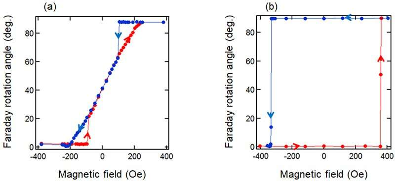 Development of magneto-optic effect measurement device using dual-comb spectroscopy