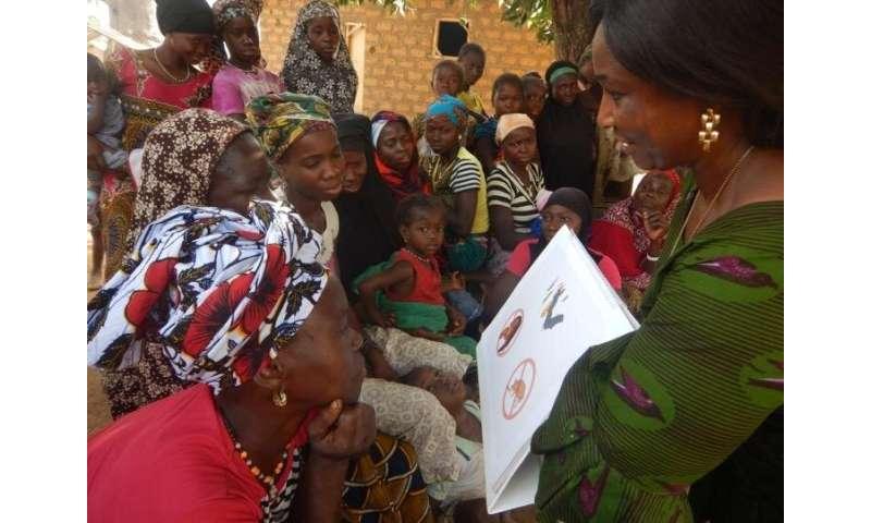Scientists identify bombali ebolavirus in bats in Guinea